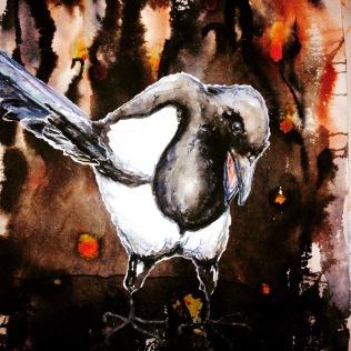 mjöhultsfågel - magpie II