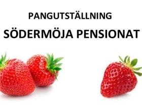 PANGUTSTÄLLNING – Södermöja Pensionat, vernissage 1juli